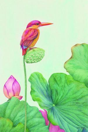 柯鴻圖 《春望》 2017  45×65㎝  版畫紙、透明水彩