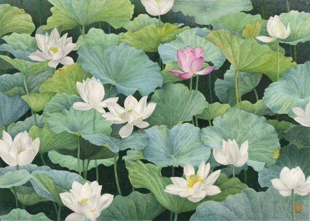 柯鴻圖 《出眾》 2018  70×100㎝  版畫紙、透明水彩