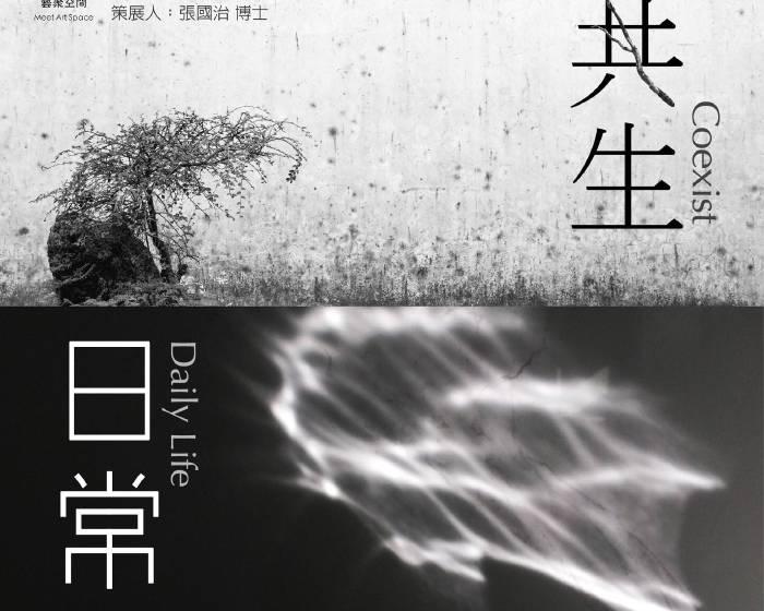 藝聚空間【藝術家沙發48x黃文志:《共生》《日常》】