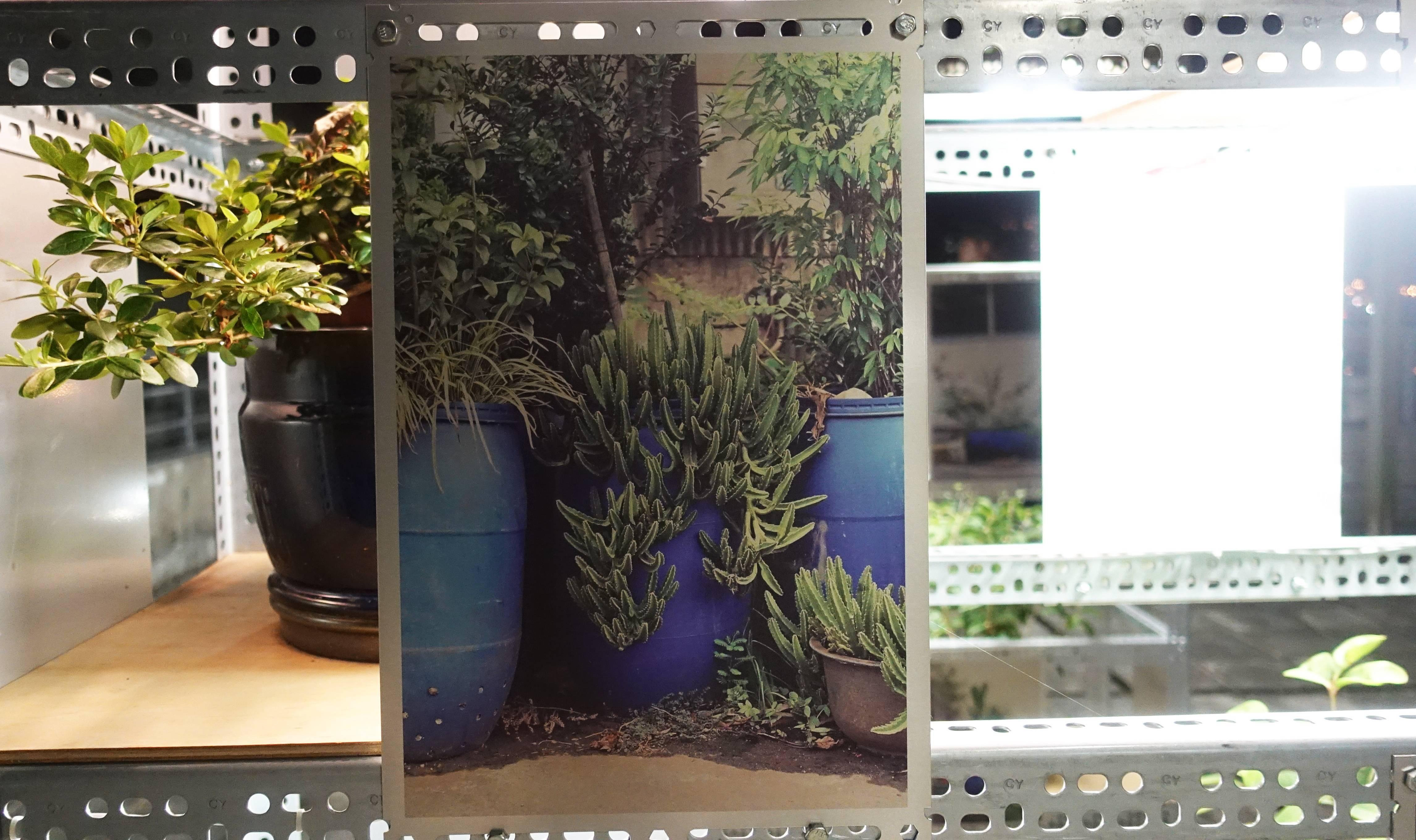 吳權倫 WU Chuan-Lun,〈街替器〉JTC(Juxtaposed Temporary Container)。圖/非池中藝術網攝。