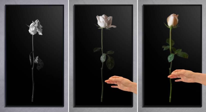 《剎那間的永恆:貪執》繪畫八連作轉化成的互動裝置(葉謹睿提供)
