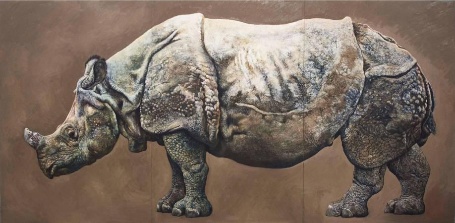 印度犀牛_小田隆作品
