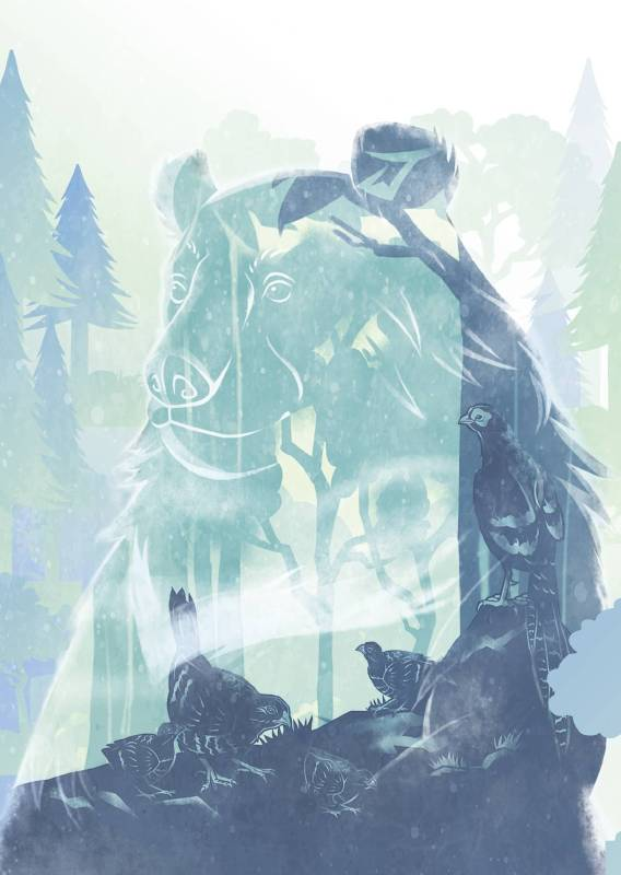 黑熊保育聯盟