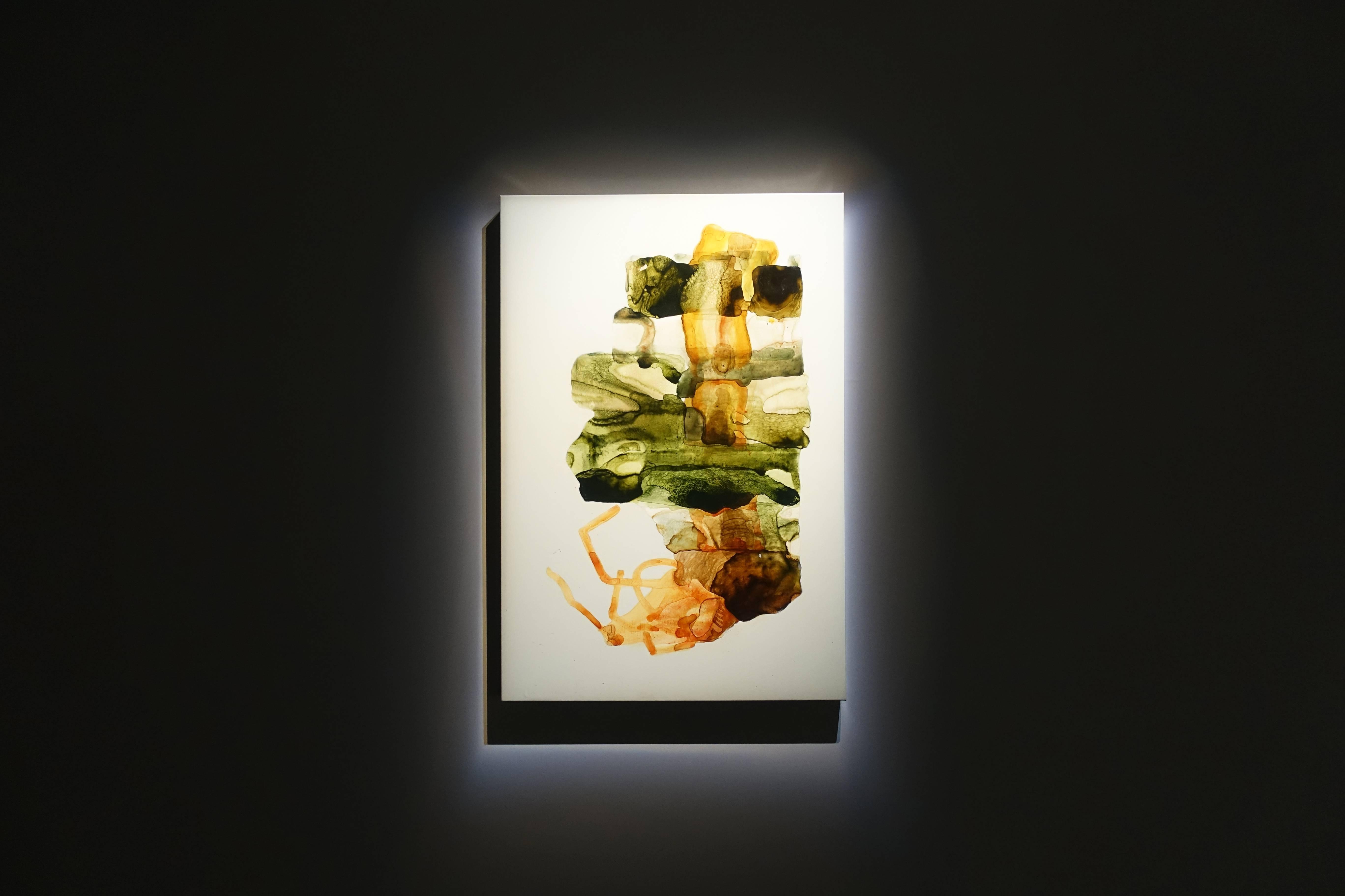 薩伊夫.加里波第,《可信的微生物#6》,壓克力畫布,2018。圖/譚竣鴻攝。
