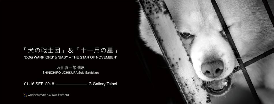 「犬の戦士団」&「十一月の星」|內倉真一郎 Shinichiro Uchikura 個展