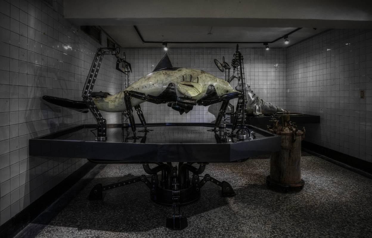 阿木司,後生物學實驗室,2016,平面影像,29x42cm。圖/尊彩藝術中心提供