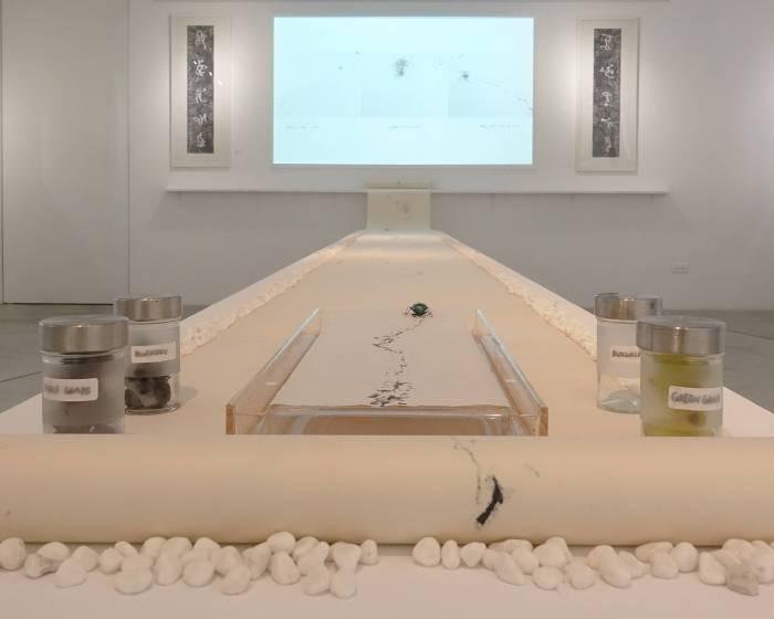 雄獅星空:蟲文展-朱贏椿與蟲子們的紙上邂逅