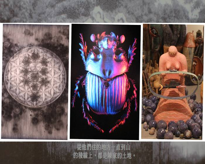 2018台灣美術雙年展《野根莖》 換個角度來看台灣在地藝術