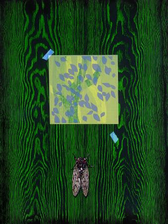 林雪卿, 蟬蛻, 105x75 cm, 併用版、 紙張, 1995