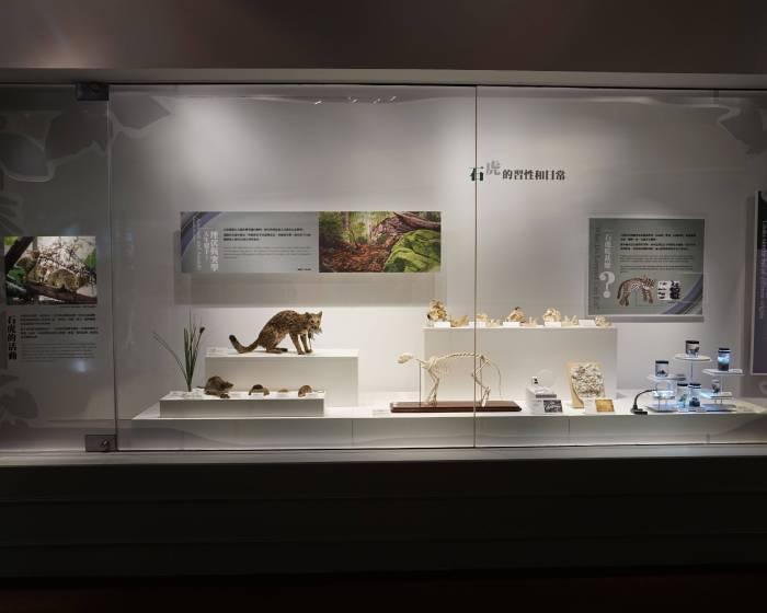 國立自然科學博物館【科博館展《石虎的美麗家園》盼大眾關注生態】多一些了解,少一些傷害
