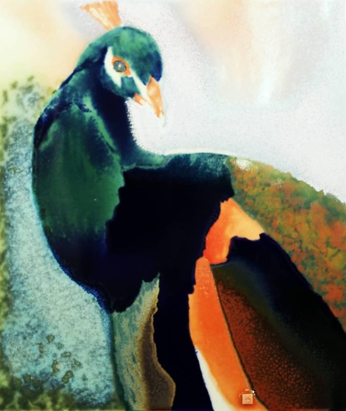 范振金 孔雀 2018年 37x32cm 陶板釉彩