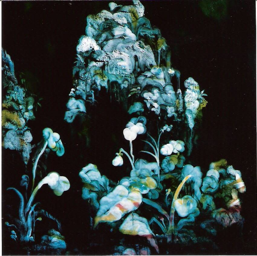 常陵|五花肉-肉山水-花欉間有山|2008|油彩|130x130cm