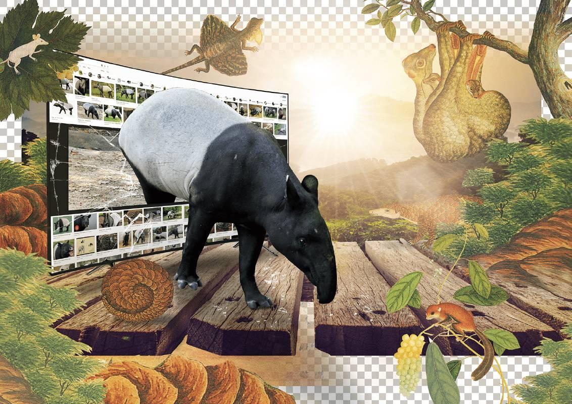 許家維 成年馬來貘在群山之中 2019 金屬支架、藝術微噴於畫布 133.5×99cm