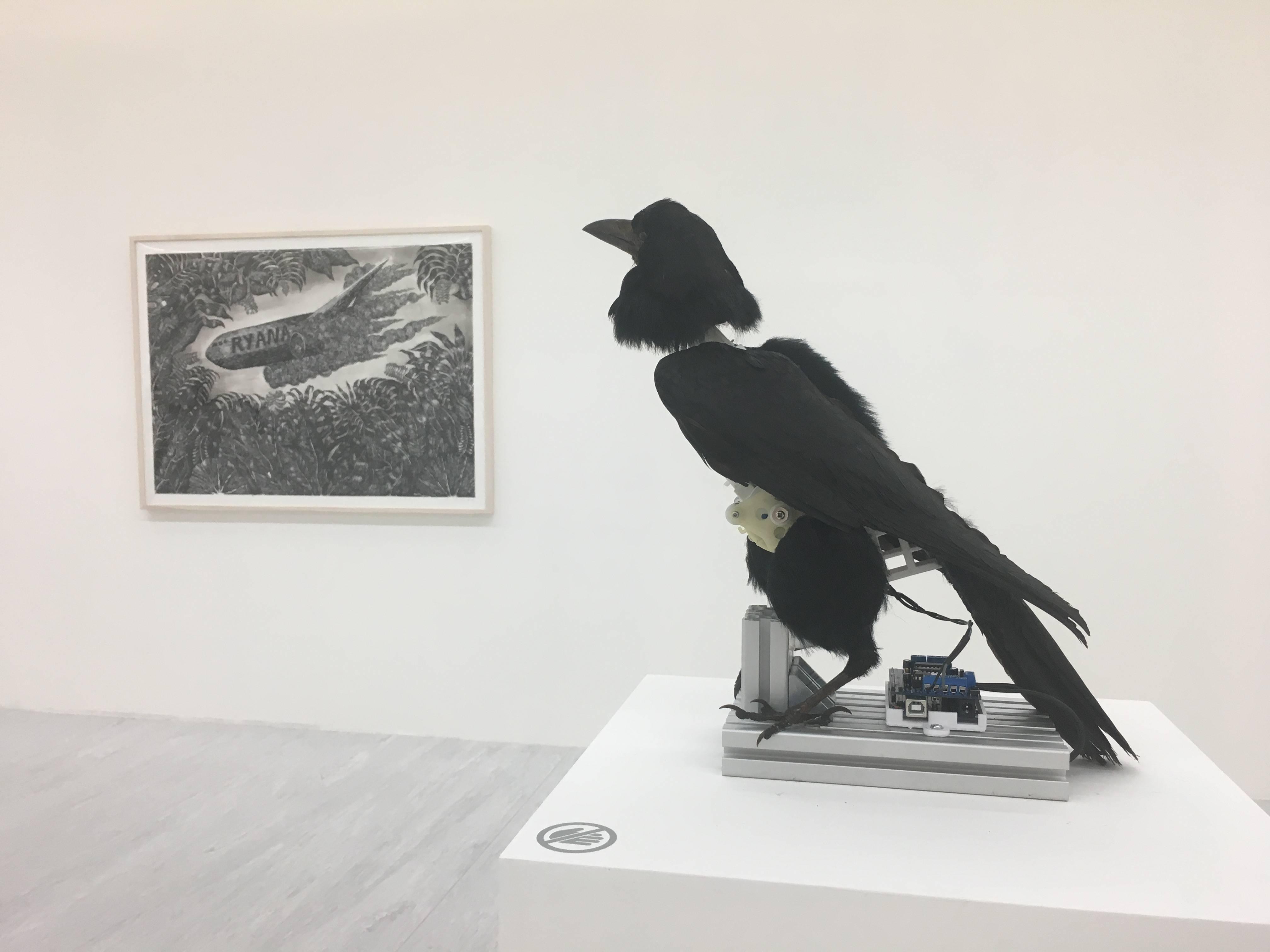 【Kosmos】張碩尹個展 張碩尹,《南冥有鳥,其名為鵬》,標本鳥、鋁、3D列印物件、電子零件,30x15x30cm,2016。