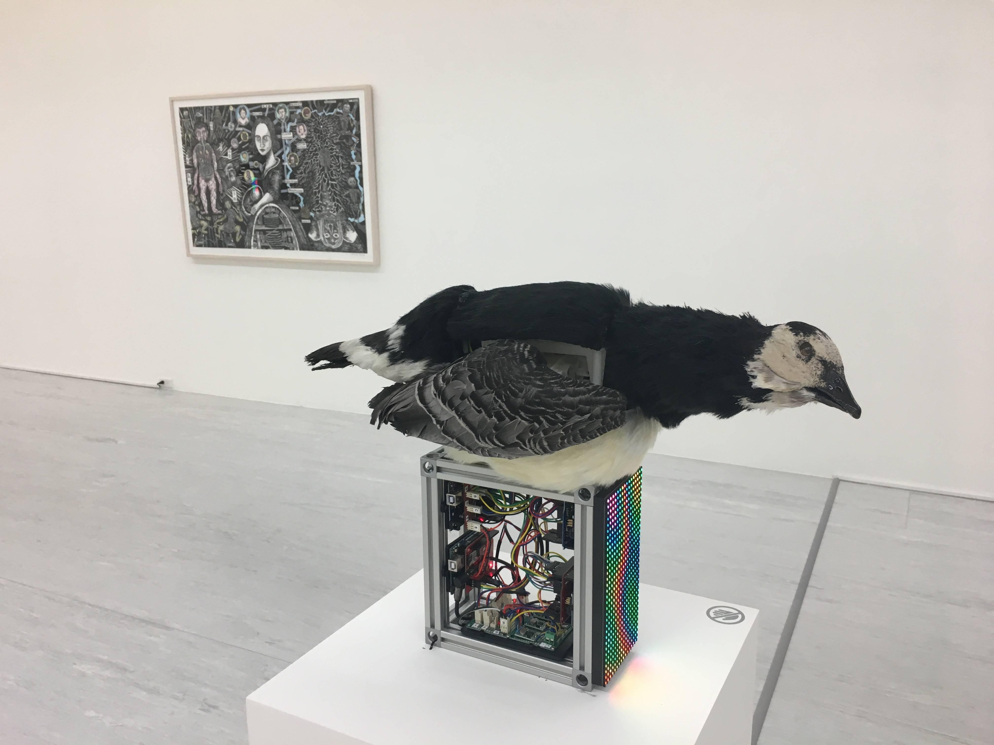 【Kosmos】張碩尹個展 張碩尹,《雅克•迪•沃康松的消化鴨 1739》,標本鳥、鋁、3D 列印物件、電子零件、LCD螢幕,50x10x50cm,2018。