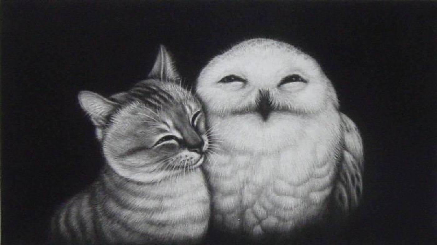 貓頭鷹與貓圖| 美柔汀銅版 Mezzotint  | 12 x 21 cm | 2010