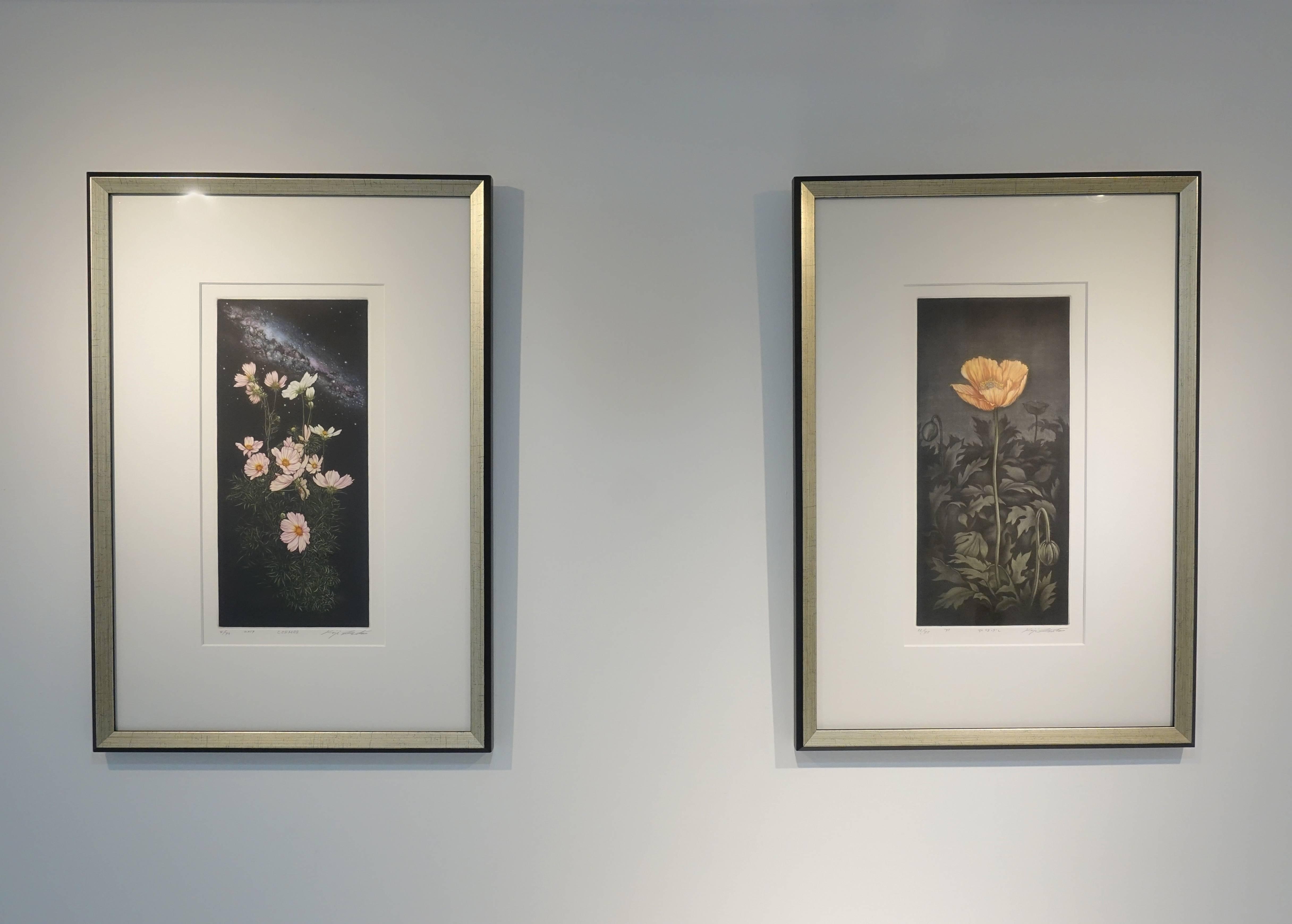 生田宏司,《虞美人(左)》,美柔汀銅版,1994。生田宏司,《波斯菊(右)》,美柔汀銅版,2019。