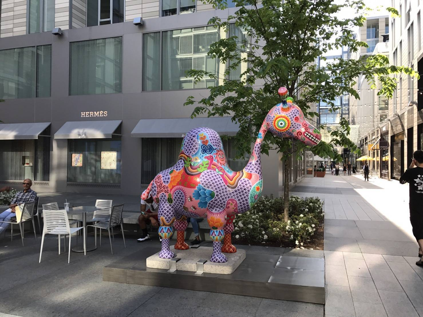洪易熱情奔放的作品「駱駝」,與華盛頓DC美輪美奐的城市空間完美結合,使藝術品與建築之間產生新的對話。