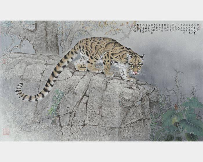 張克齊-雲豹