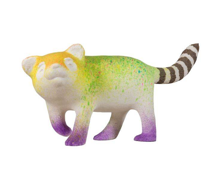 蔡潔莘-彩虹與村落的浣熊