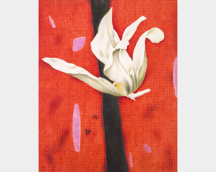 金芬華-木蘭花開-紅