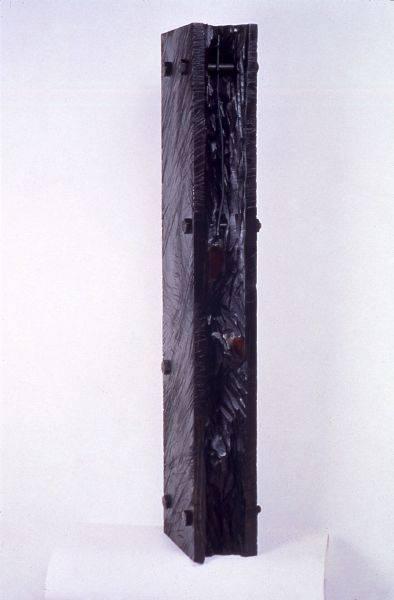 薄茵萍-懸崖上的脊椎