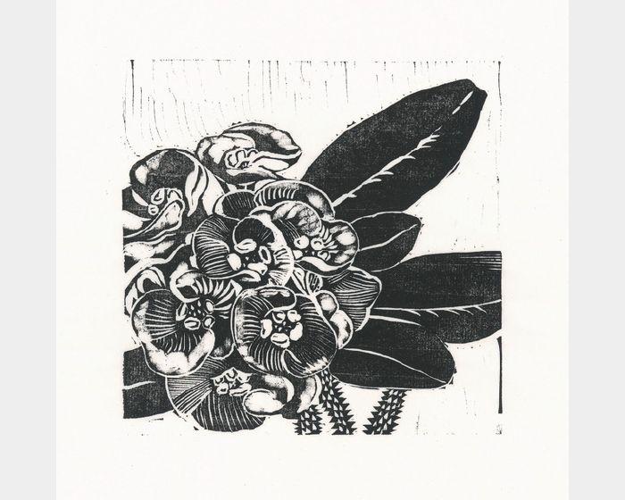 徐睿志-蛤蠣花。1/30