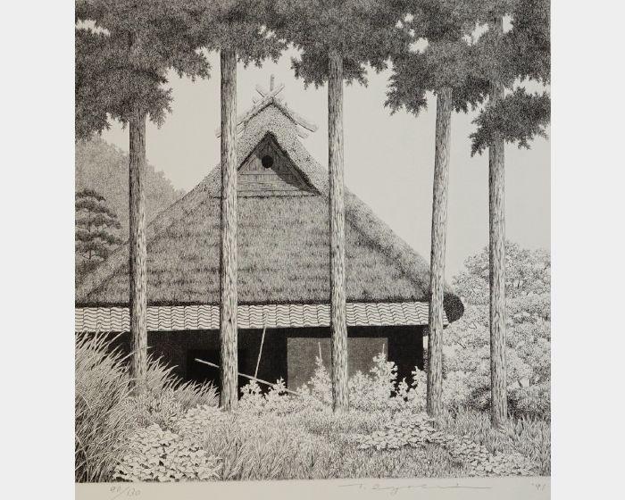 田中良平-491 京北之夏-90/130