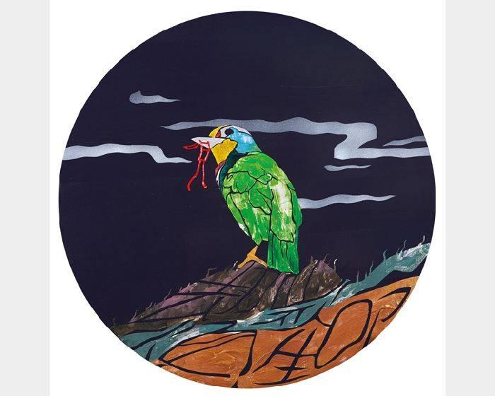 蔡士弘-五色鳥