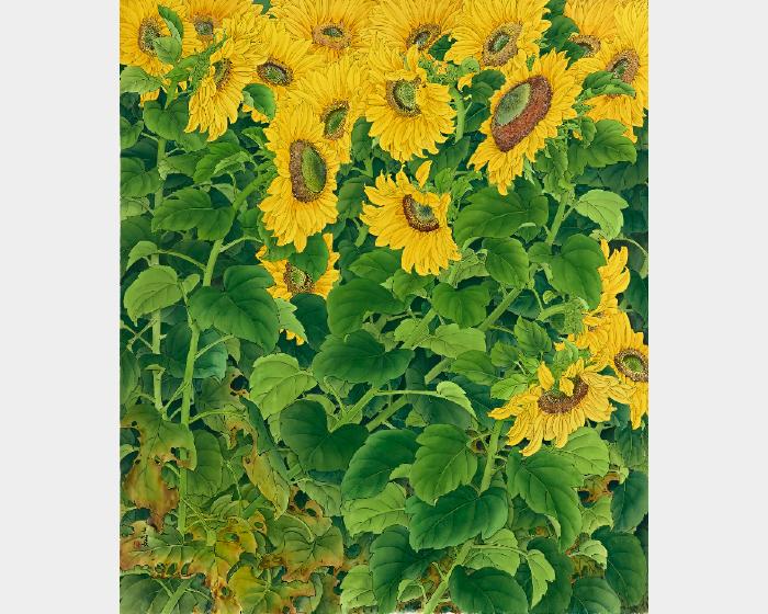 陳士侯- 向日葵