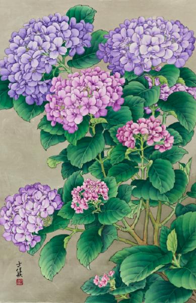 陳士侯-繡球花