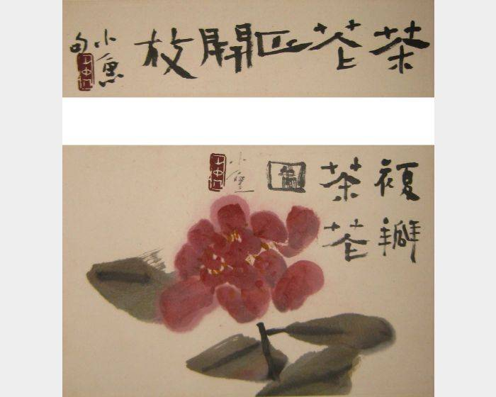 小魚-複瓣茶花图