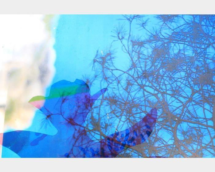 張雅棠-每個藍天下1-1