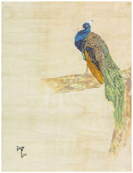 陳沁懋-孔雀(公)