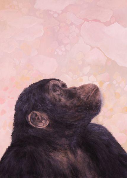 蘇柔安-猩猩與我-8