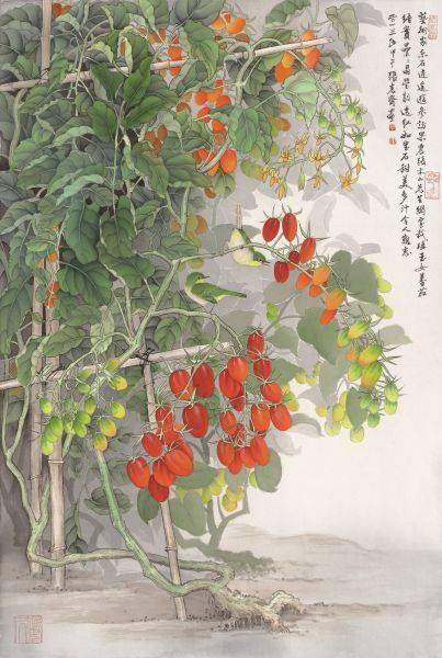 張克齊-玉女番茄