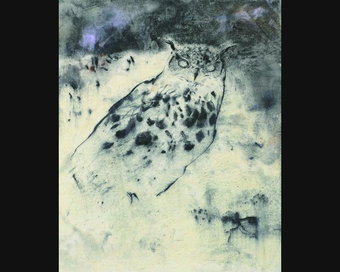 梁兆熙-貓頭鷹A01