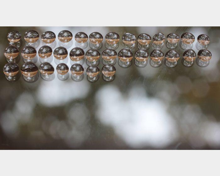 徐嘒壎-Autumn Drop 水滴的秋