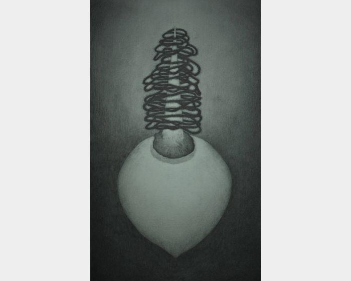 陳鈺霖-用點綴的毛條代替葉