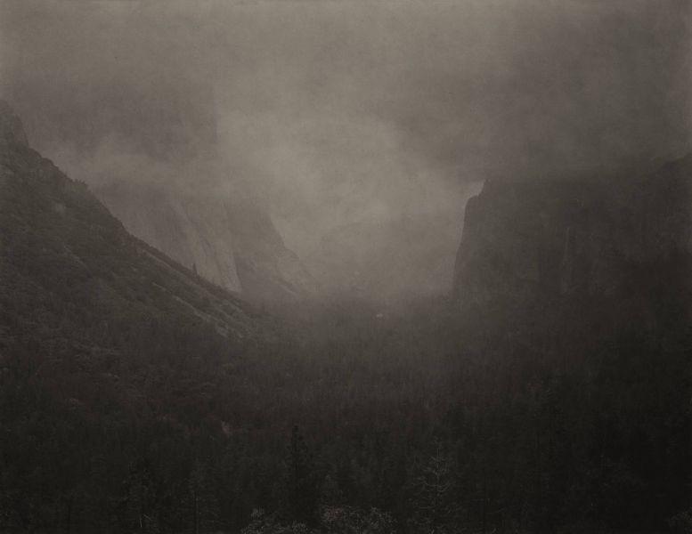 志鎌猛-《森之襞 - 優勝美地: 優勝美地 #1》 Silent Respiration of Forests-Yosemite: Yosemite #1