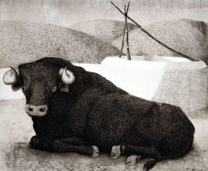 Manuel Manzorro Pérez-種牛 Stud