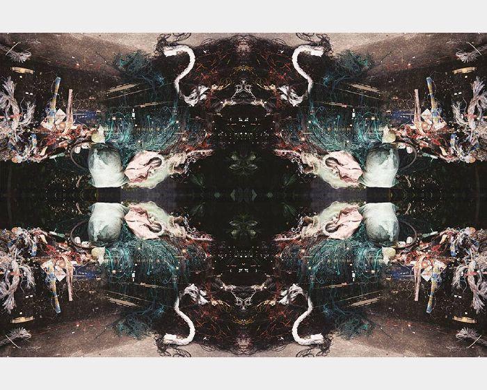 林佾璁-暗物質/地獄