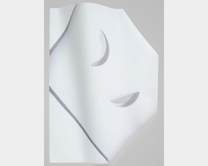 楊雅淳-《凸起、缺口、影子》