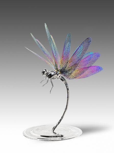高孝午-再生 - 蜻蜓