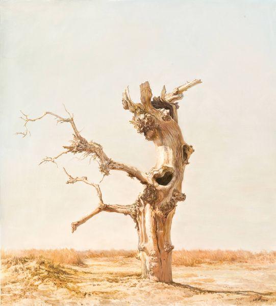 林建-不朽‧大漠之靈