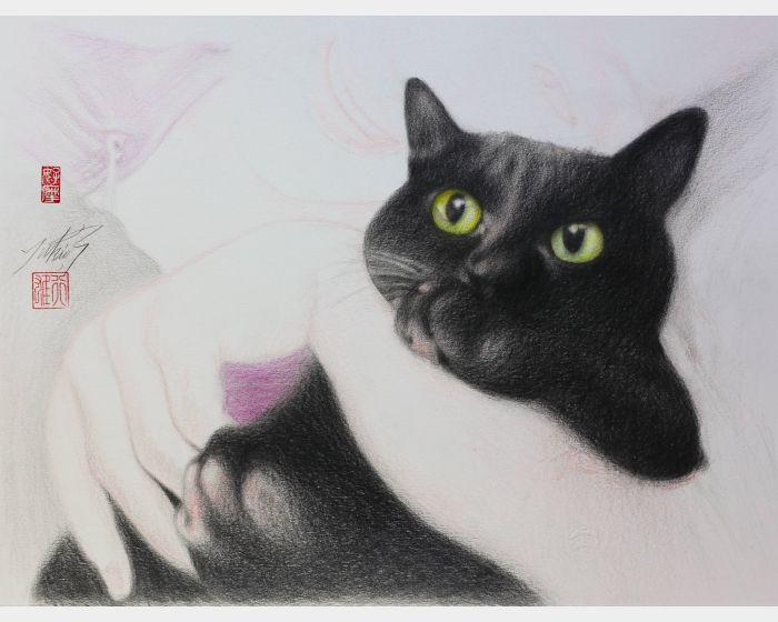 高橋行雄-黑猫 Black cat