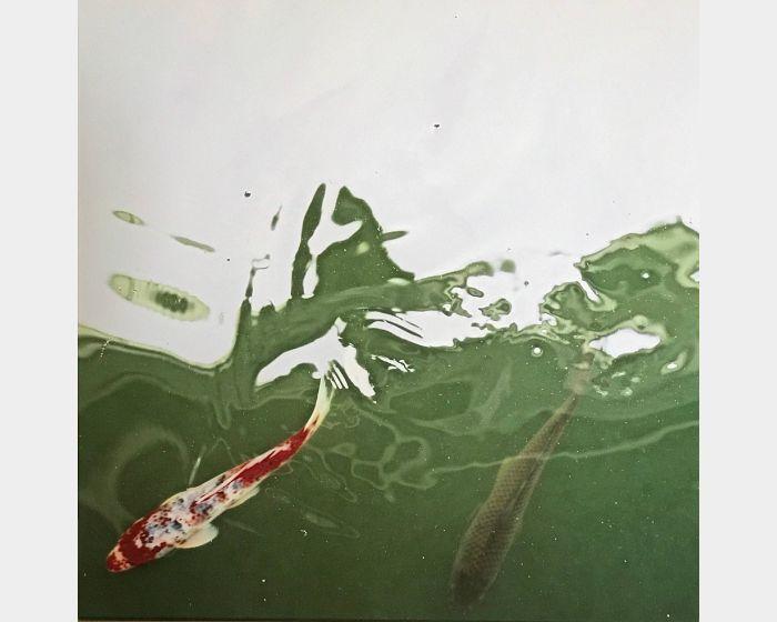 韓湘寧-魚池自畫像-1