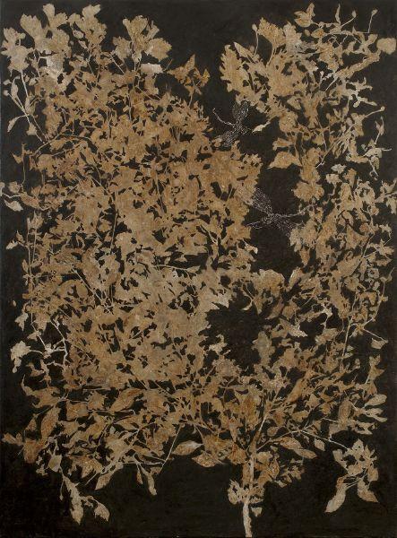 蔡獻友-原植物-雙蜓圖