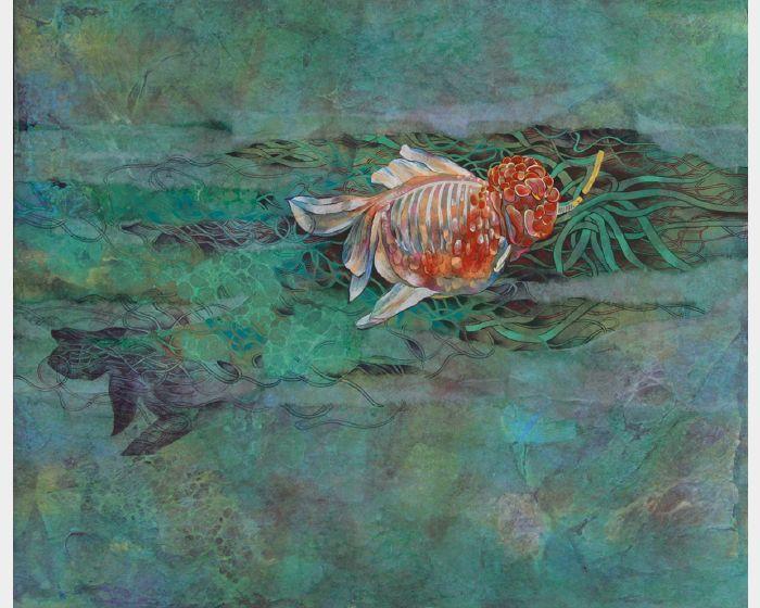 孔雱瑩-潛水員