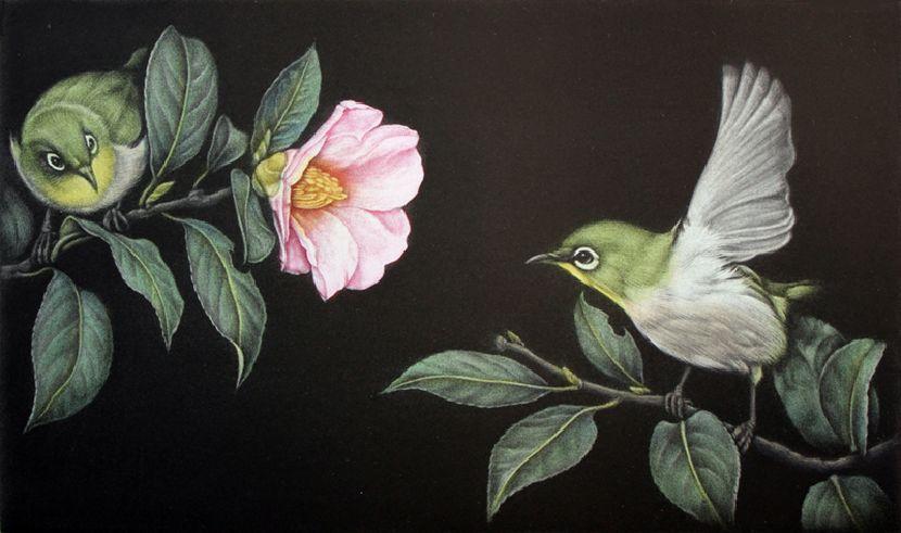 生田宏司-茶花上的繡眼鳥
